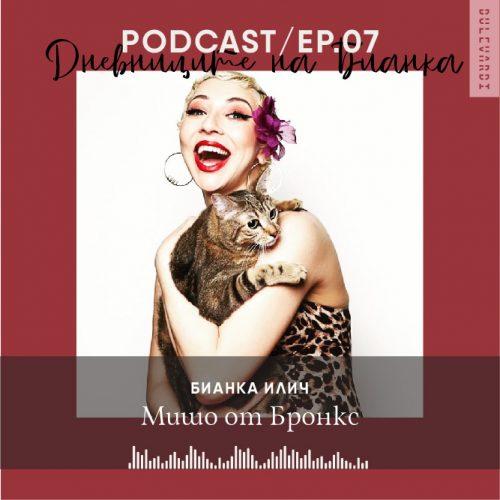 ep.07.BI.Podcast-01